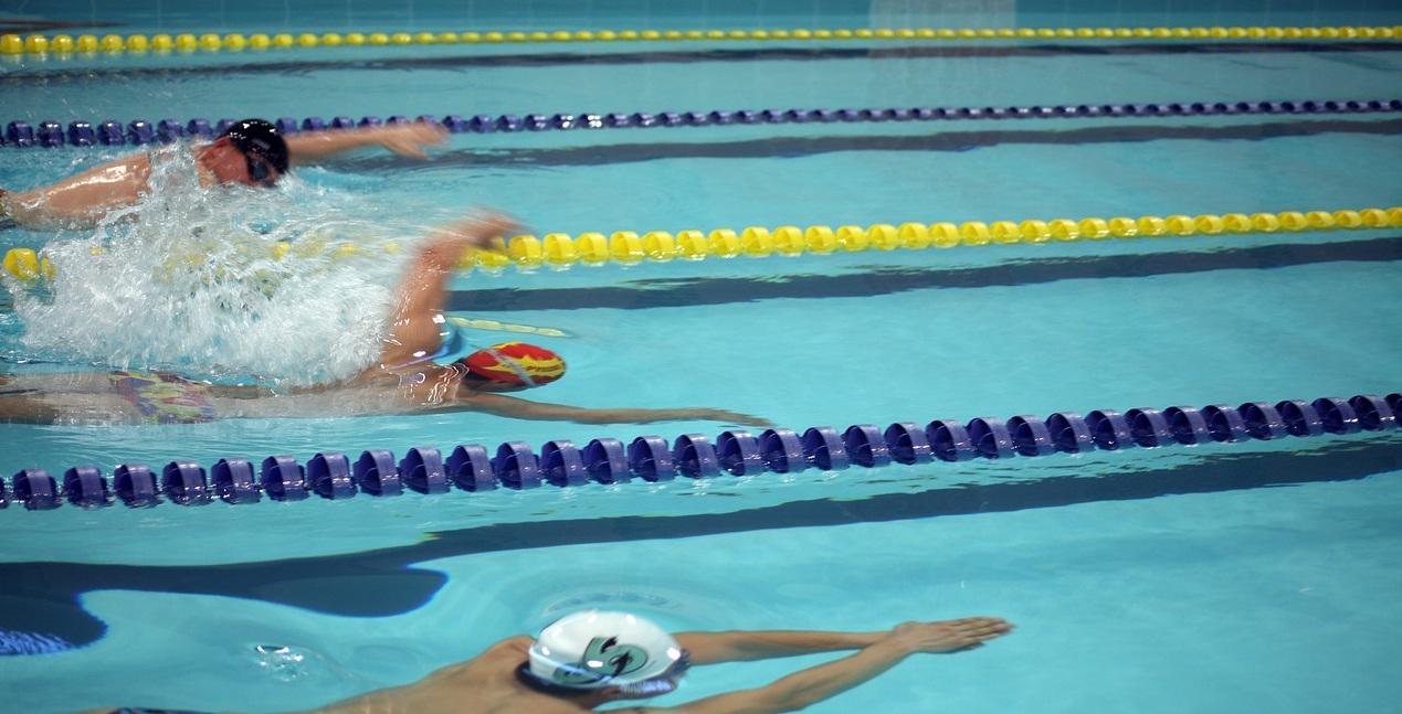 Юные пловцы из района Ховрино победили на Всероссийских соревнованиях «Весёлый Дельфин». Фото: pixabay.com